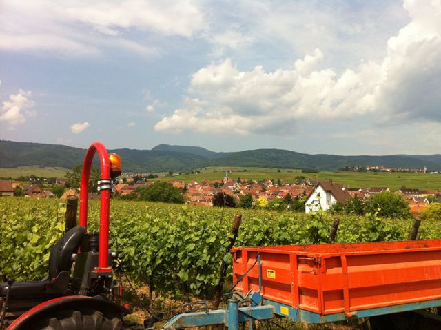 Crise agricole d claration de nicolas sarkozy site - Comptoir agricole bas rhin ...